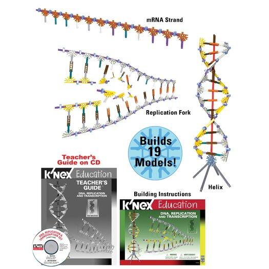 K'NEX Education DNA, Replications and Transcription Set
