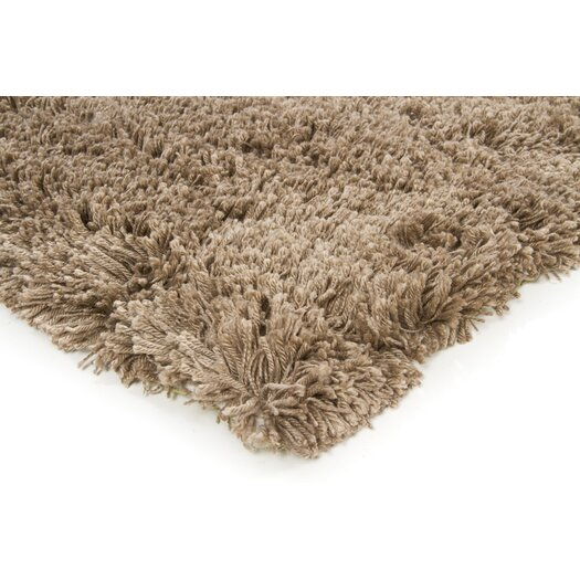 Chandra Rugs Bancroft Shag Brown Area Rug