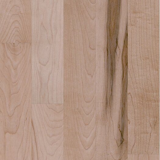 "Shaw Floors Nantucket 4"" Solid Maple Plank Flooring in Prospect Hill"