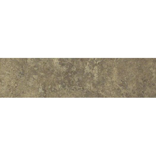 "Shaw Floors Lunar 12"" x 3"" Bullnose Tile Trim in Noce"