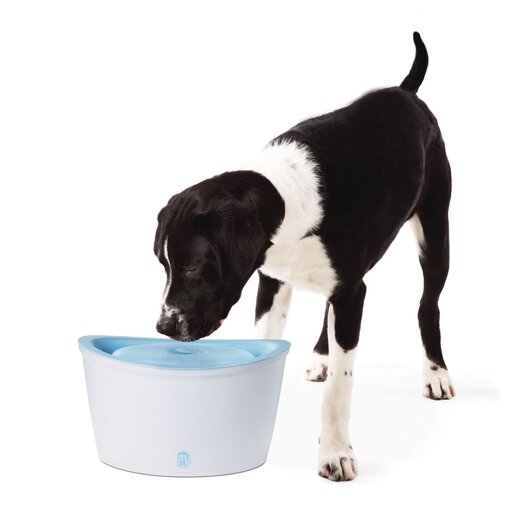 Dogit by Hagen Dogit Design Fresh and Clear Pet Fountain