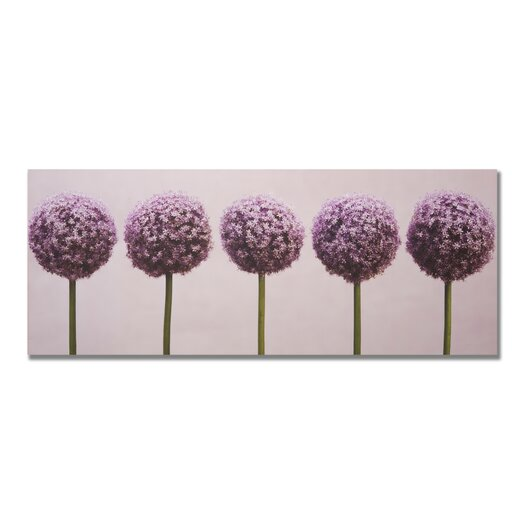 Row Of Alliums Photographic Print on Canvas