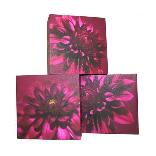 Graham & Brown Graham and Brown Dahlia Trio Blocks 3 Piece Painting Print on Canvas Set