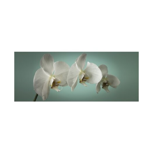 Graham & Brown Teal Orchid Canvas Art