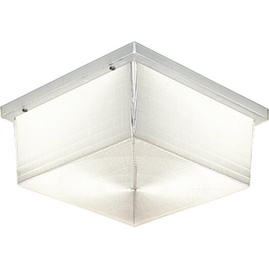 Progress Lighting Hard-Nox Incandescent 2 Light Outdoor Flush Mount with Diffuser