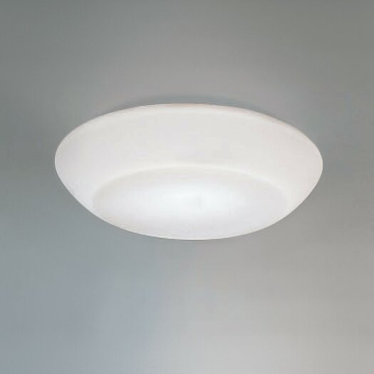 Zaneen Lighting Delphinia Wall or Ceiling Flush Mount
