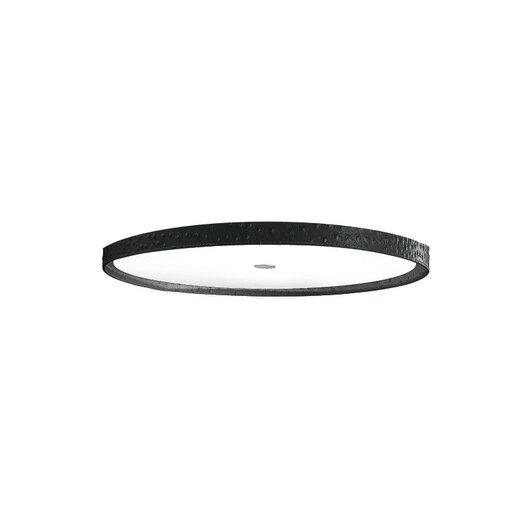 Accessory Acrylic Screen for Saturn Lamp Shade