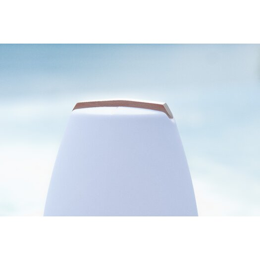 Smart & Green Vessel LED Lamp