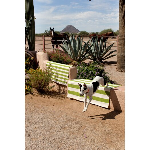 Dash and Albert Rugs Catamaran Green / White Striped Outdoor Area Rug