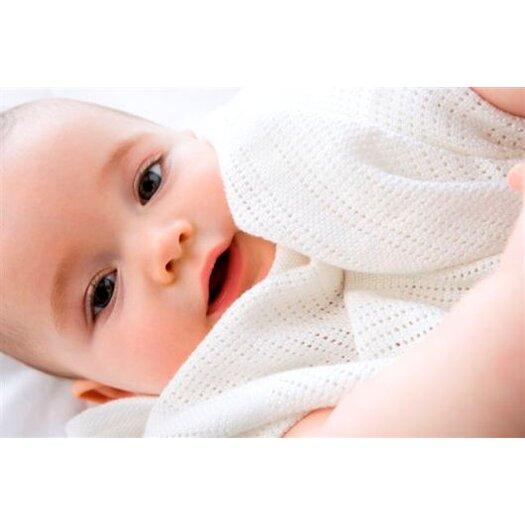 Little Bamboo Airflow Bassinet Blanket