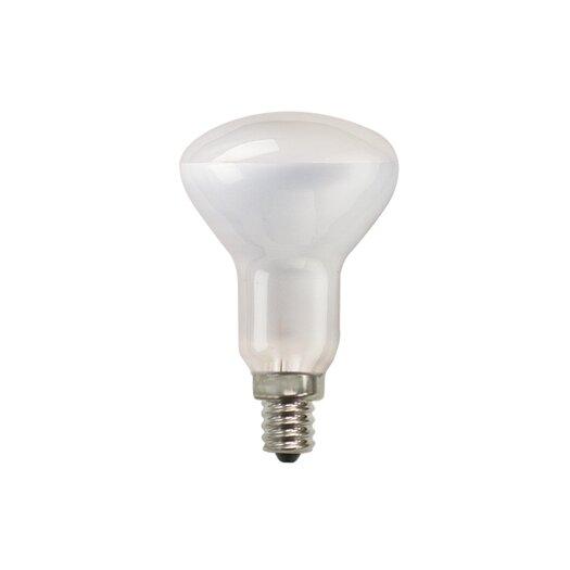 Bulbrite Industries 50W 130-Volt (2700K) Incandescent Light Bulb