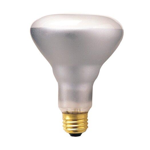 Bulbrite Industries Dimmable 130-Volt (2700K) Incandescent Light Bulb