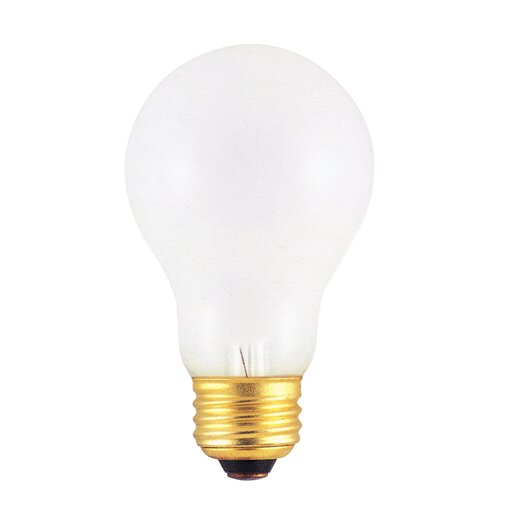 Bulbrite Industries Frosted 220 - Volt (2600K) Incandescent Light Bulb (Pack of 2)
