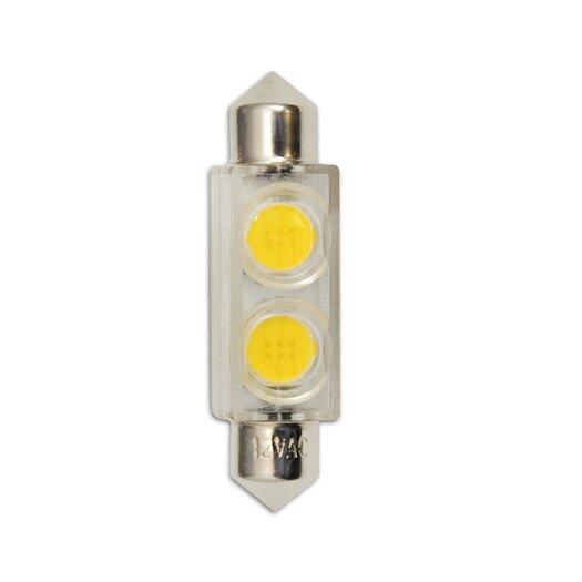 Bulbrite Industries 0.8W 24-Volt (3000K) LED Light Bulb