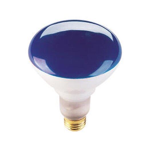 Bulbrite Industries 75W Blue 120-Volt Halogen Light Bulb