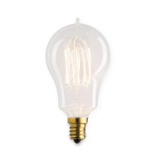 Bulbrite Industries Flynn 25W Incandescent Light Bulb