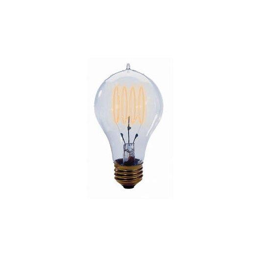 Bulbrite Industries 40W 120-Volt Incandescent Light  Bulb