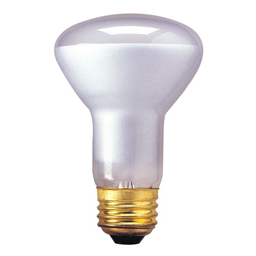 Bulbrite Industries 130-Volt Incandescent Light Bulb