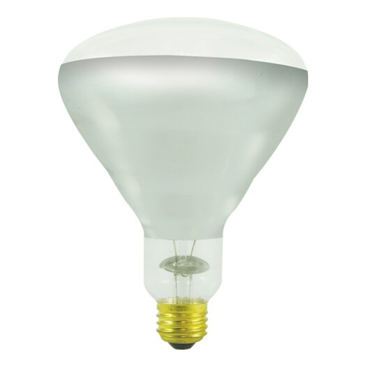 Bulbrite Industries 250W Incandescent Light Bulb