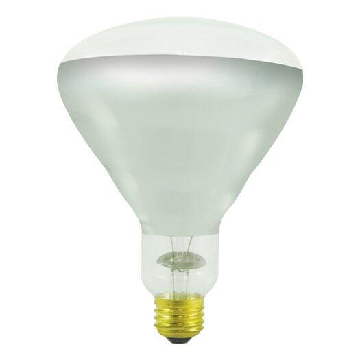 Bulbrite Industries 250W Incandescent Light Bulb