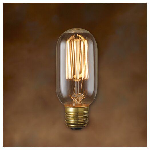 Bulbrite Industries Nostalgic 40W Incandescent Light Bulb