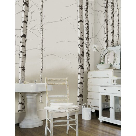 4 Walls Modern Murals Birch Trees Wall Mural