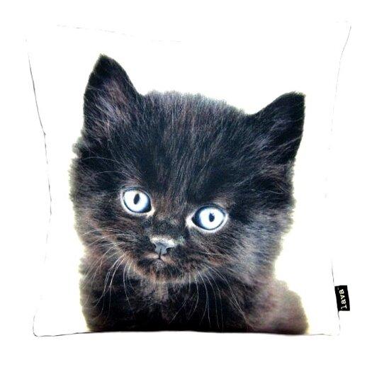 lava Persian Cat Pillow