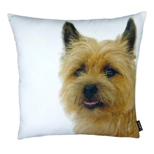 lava Terri Pillow