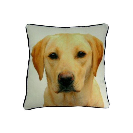 lava Lab Pillow