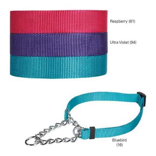 Guardian Gear Martingale Dog Collar