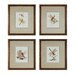 <strong>Sterling Industries</strong> Dragonflies 4 Piece Framed Graphic Art Set