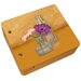 Gerber Daisies Mini Decorative Storage Box