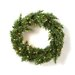 <strong>General Foam Plastics</strong> Prelit Evergreen Fir Wreath with 100 Clear Indoor/Outdoor Lights