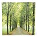 Oriental Furniture Path of Life Photographic Print on Canvas