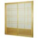 Eudes Shoji Double Sliding Sliding Door Kit