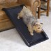 """<strong>Smart Junior 39.5"""" Pet Ramp</strong> by Mr. Herzher's"""