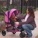 <strong>Pet Gear</strong> Special Edition Standard Pet Stroller