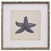 <strong>Mirror Image Home</strong> Mini Indigo Starfish IV Framed Graphic Art