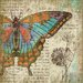 Butterfly 2 Left Wall Art by Suzanne Nicoll