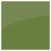 Leaf Green Satin