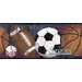 <strong>York Wallcoverings</strong> Mural Portfolio II Multi Sports Balls Wallpaper Border
