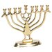 Israel Giftware Design Brass Menorah