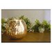 Amber Home Products Champagne Ball Shaped Votive