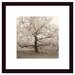 Apple Tree in Bloom Wood Framed Art Print