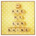 <strong>You Are My Sunshine by Happee Monkee Photographic Print on Canvas</strong> by DENY Designs