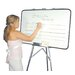 <strong>Lecturer-Sales Kit 2' x 3' White Board</strong> by Testrite