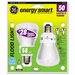 <strong>14W 120-Volt Fluorescent Light Bulb</strong> by GE