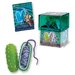 <strong>4 Piece Bacteria Model Set</strong> by Tedco Toys
