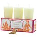 Classic Toile Clementine Votive Candle Set