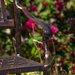 Home Loft Concept Amador Aluminum Garden Bench